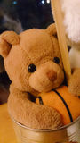 O urso pode dentro Imagem de Stock Royalty Free