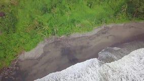 O vídeo da parte superior da praia com areia preta, a selva densa e as ondas de oceano lavam a praia preta exótica, mundo perdido vídeos de arquivo