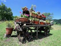 o vagão de madeira velho festooned com muitos potenciômetros das flores no hidromel Foto de Stock
