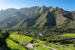 O vale fértil com manga e as laranjas frutificam plantações, vinhedos e pomares dos abacates perto de Agaete, Gran Canaria, Ilhas imagem de stock