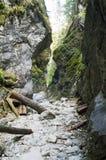 O vale Koscieliska   Fotos de Stock Royalty Free