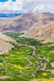 O vale verde cercado por montanhas, ladakh, india Fotografia de Stock
