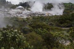 O vapor geotérmica flui de Hot Springs e dos respiradouros térmicos Imagem de Stock Royalty Free