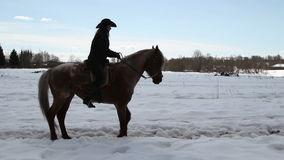 O vaqueiro fêmea monta um cavalo em um galope Fotos de Stock