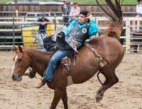 O vaqueiro Hangs do rodeio sobre Imagem de Stock