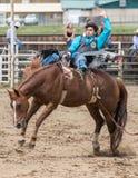 O vaqueiro Hangs do rodeio sobre firmemente Fotografia de Stock Royalty Free