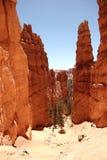 Bryce Canyon3 Fotos de Stock