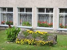 O vaso do tronco de árvore com flores aproxima a casa Fotografia de Stock