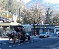 O veículo do cavalo na rua fotos de stock royalty free