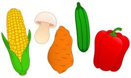 O vegetal ajustou 3 Imagem de Stock