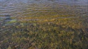O vento funde através da água, causando uma ondinha filme