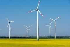 O vento moderno roda dentro um campo do óleo de colza de florescência Fotos de Stock Royalty Free