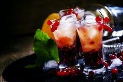 O verão alcoólico do cocktail efervesce com laranja e redcurrant, selec imagem de stock