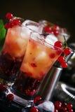 O verão alcoólico do cocktail efervesce com laranja e redcurrant, selec fotografia de stock
