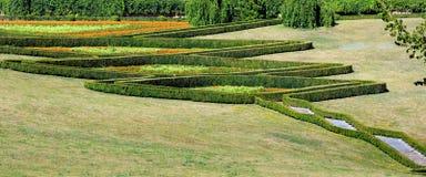 O verão aparou o buxo no montanhês do parque em um gramado da grama verde Imagem de Stock