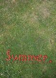 O verão da palavra soletrado nas morangos Imagens de Stock Royalty Free