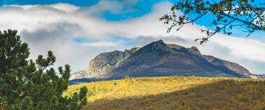 O verão ensolarado bonito da montanha e da floresta de Crimeia ajardina Imagem de Stock