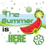 O verão está aqui Imagens de Stock Royalty Free