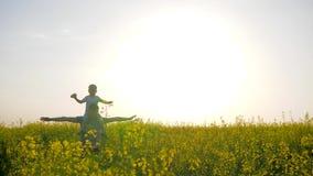 O verão, família que levanta as mãos que jogam acima no luminoso, filho senta-se em ombros gena no prado no dia ensolarado video estoque