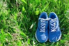 O verão ostenta a composição com as sapatilhas azuis na parte traseira da grama verde Fotografia de Stock
