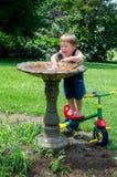 O verão refrigera fora o banho do menino e do pássaro Imagens de Stock