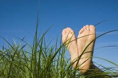 O verão relaxa Imagens de Stock