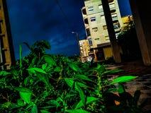 O verde é azul poderoso é energético foto de stock royalty free