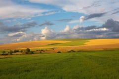 O verde amarelo coloca o céu e as nuvens imagens de stock royalty free