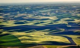 O verde coloca testes padrões de terra pretos Palouse Fotografia de Stock Royalty Free