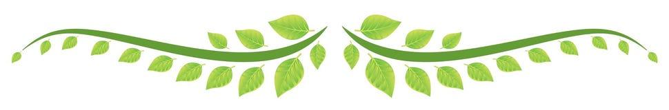 O verde deixa a beira Imagem de Stock Royalty Free