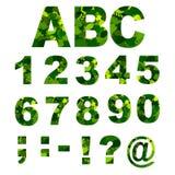 O verde deixa a fonte - números Ilustração do vetor Fotos de Stock Royalty Free