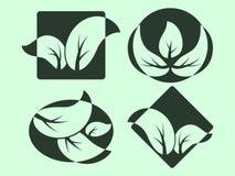 O verde deixa logotipos Imagem de Stock