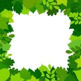 O verde deixa o frame Fotos de Stock Royalty Free
