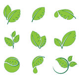O verde deixa o grupo do ícone do vetor do símbolo da folha Imagens de Stock Royalty Free