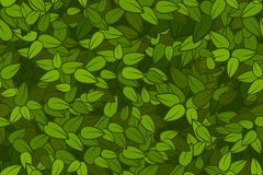 O verde deixa a textura sem emenda Fotografia de Stock