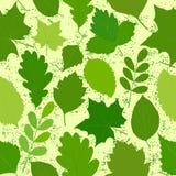 O verde deixa a textura sem emenda Imagens do vetor Foto de Stock Royalty Free