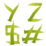 O verde do caráter deixa o fern isolado Imagem de Stock Royalty Free