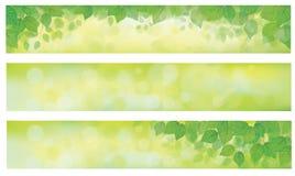 O verde do vetor deixa bandeiras ilustração do vetor