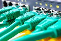 O verde dos cabos de remendo é introduzido em todos os portos do interruptor, a indicação fotografia de stock
