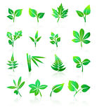 O verde folheia ícones Fotos de Stock Royalty Free