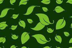 O verde folheia fundo sem emenda Teste padr?o sem emenda das ?rvores de floresta nave ilustração royalty free