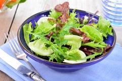 O verde misturado deixa a alface da salada Imagem de Stock