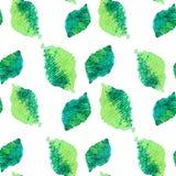 O verde sem emenda deixa o teste padrão Imagem de Stock Royalty Free