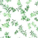 O verde sem emenda do teste padrão sae em um fundo branco watercolor ilustração do vetor
