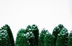 O verde tonificou a imagem de cones nevado do pinho Foto de Stock