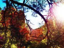 O vermelho de Sedona balança o Arizona Fotos de Stock