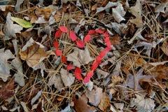 O vermelho deixa o coração dado forma Fotos de Stock Royalty Free