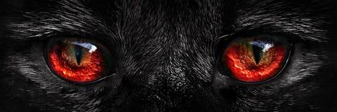 O vermelho desgrenhado do monstro eyes o close up Imagem de Stock