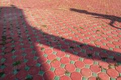 O vermelho e o azul coloriram o tijolo do pavimento com ervas daninhas verdes e sombras grandes fotografia de stock royalty free