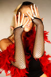 O vermelho empluma-se #4 Foto de Stock